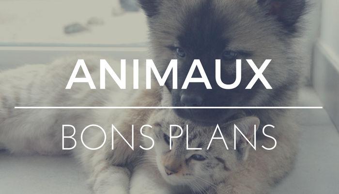 Bons plans Animalerie